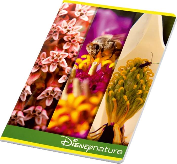 Slika od DISNEY NATURE bilježnica A4 kocke 1-10 – 100 g papir