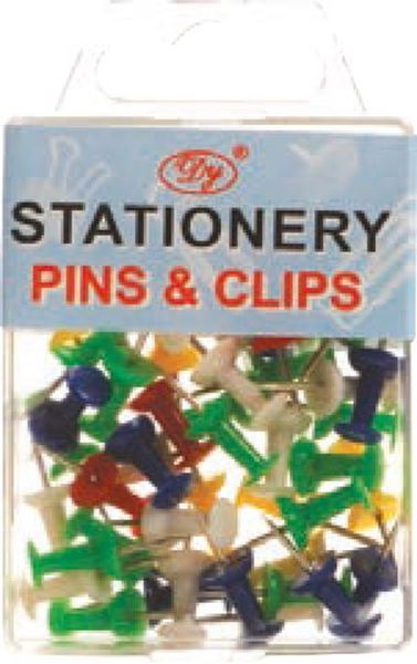 Picture of PINS 1/100