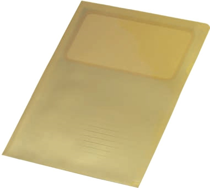 Picture of Punched pocket L - luxury A4 gold, linear 1/50