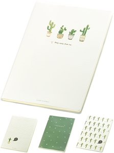 Picture of CACTUS notebook B5 - lines